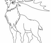Free coloring and drawings American Caribou Coloring page