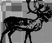 Free coloring and drawings Caribou in black Coloring page
