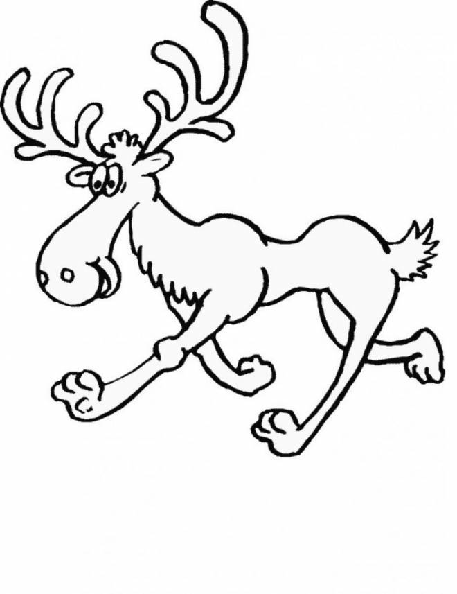 Free coloring and drawings Hilarious Reindeer Coloring page