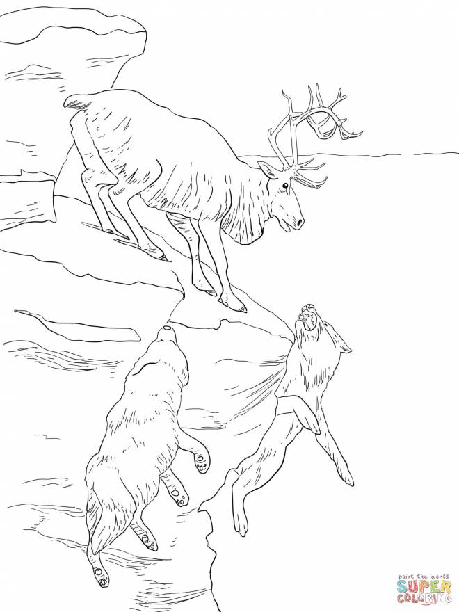Free coloring and drawings Reindeer and wolves Coloring page