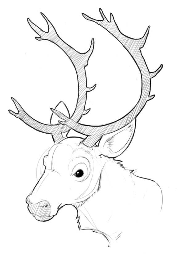 Free coloring and drawings Reindeer head with its big horns Coloring page