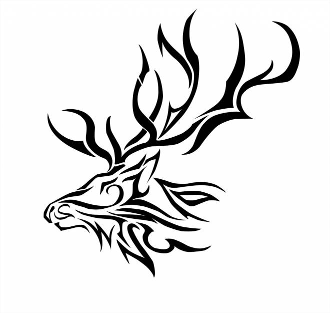 Free coloring and drawings vector Reindeer head Coloring page