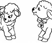 Free coloring and drawings Cute sheep Coloring page