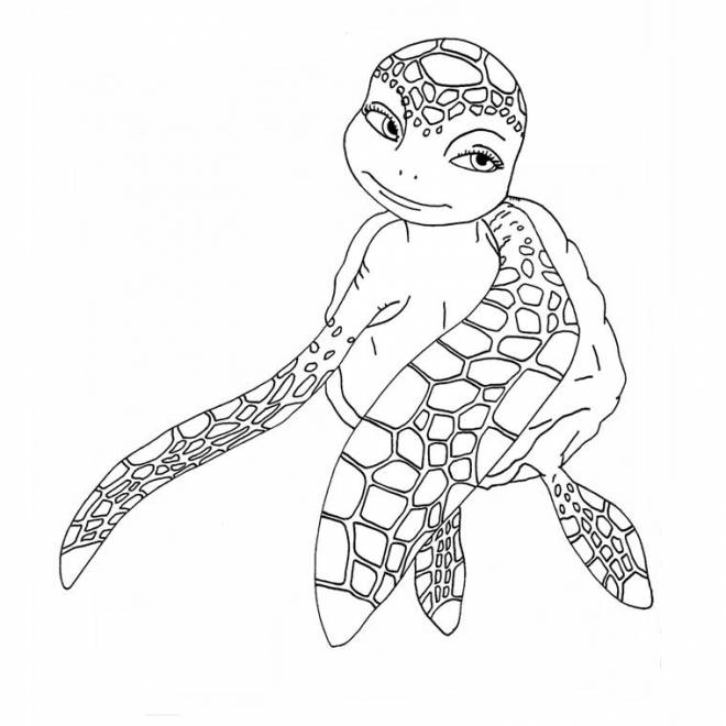 Free coloring and drawings Amorous sea turtle Coloring page
