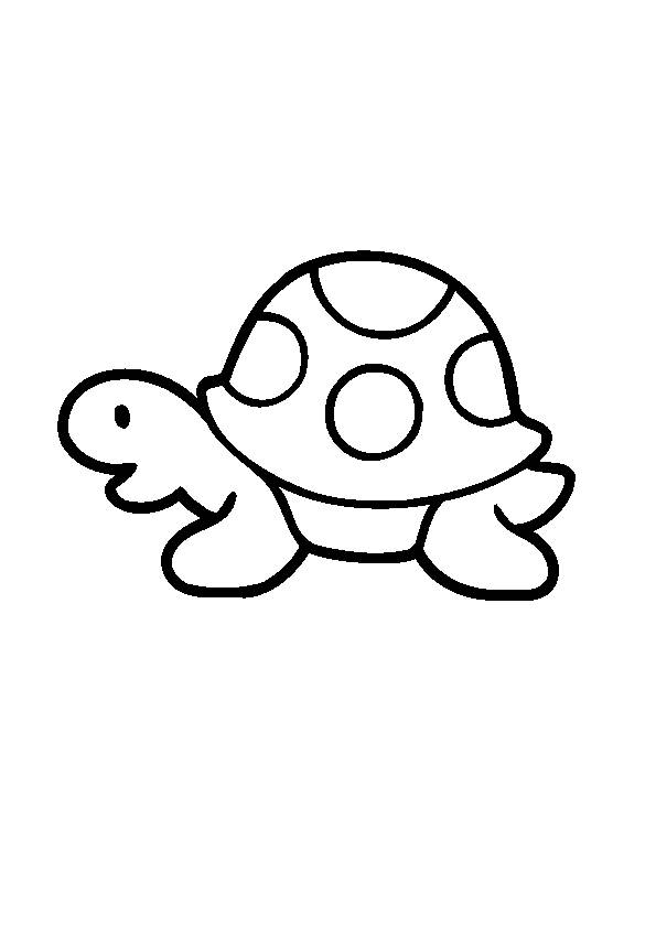 Free coloring and drawings Easy turtle Coloring page