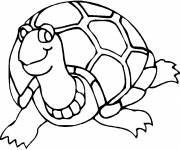 Coloring pages Fun turtle