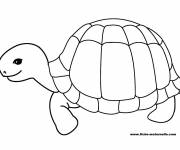 Free coloring and drawings Happy turtle Coloring page