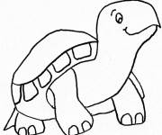 Coloring pages Land turtle