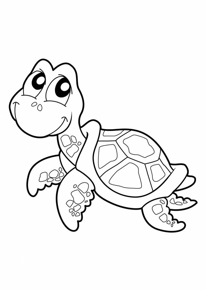 Free coloring and drawings Smiling turtle Coloring page