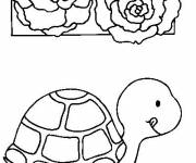 Coloring pages Turtle and his meal