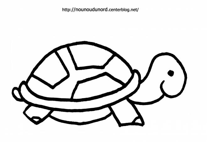 Free coloring and drawings Turtle for child Coloring page