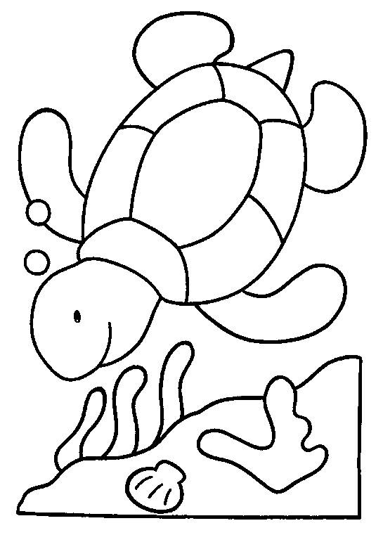 Free coloring and drawings Turtle in the sea Coloring page