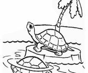 Coloring pages Turtle on an island
