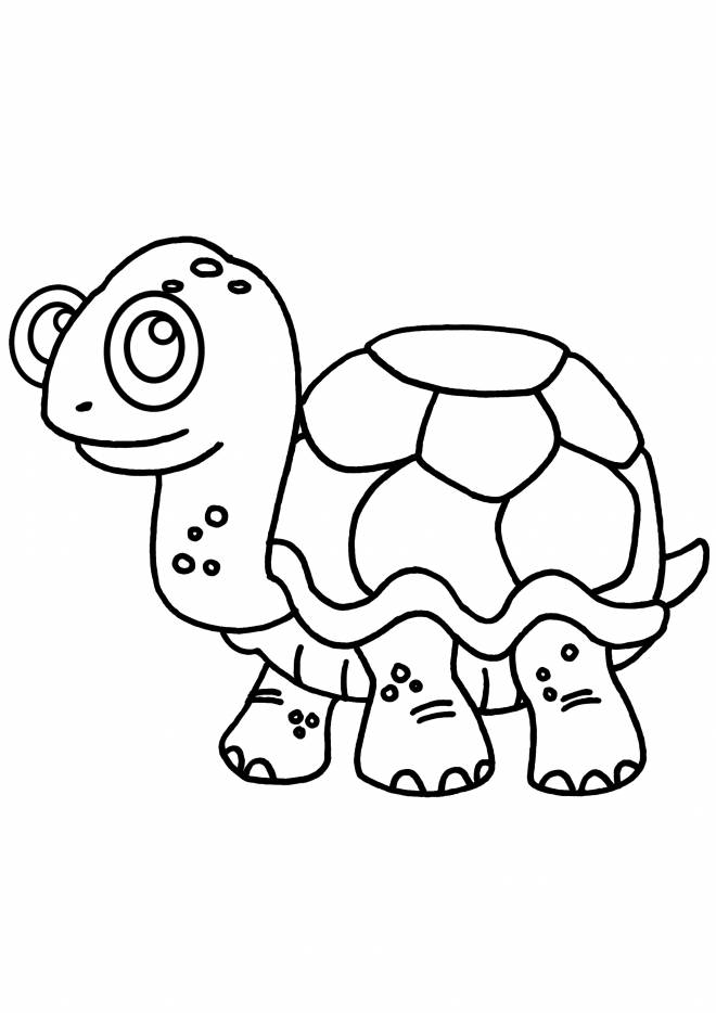 Free coloring and drawings Turtle wearing glasses Coloring page