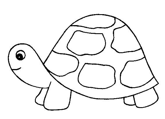 Free coloring and drawings Turtle with little head Coloring page