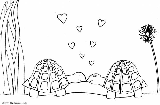 Free coloring and drawings Turtles in love Coloring page