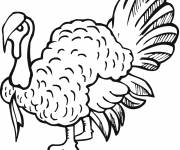 Coloring pages Turkey in black
