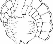 Coloring pages Turkey to download