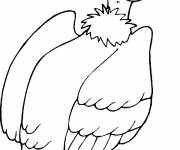 Coloring pages Black and white vulture