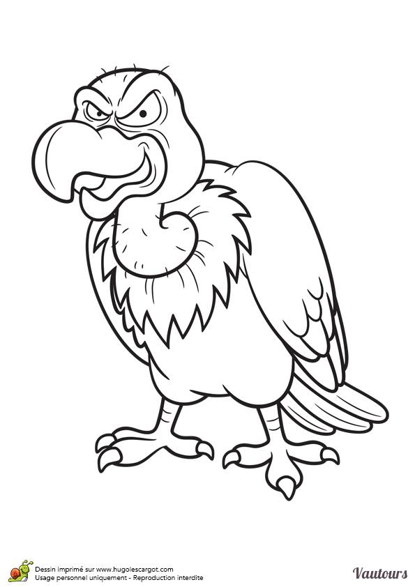 Free coloring and drawings Cartoon vulture Coloring page
