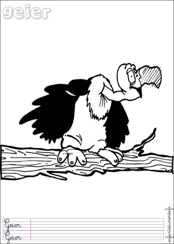 Free coloring and drawings Funny vulture Coloring page