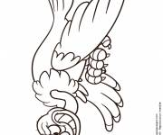 Free coloring and drawings Laughing vulture Coloring page