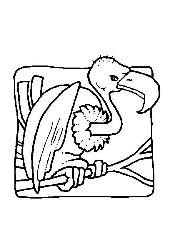Free coloring and drawings Vulture on the tree Coloring page