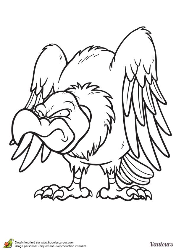 Free coloring and drawings Wicked vulture Coloring page