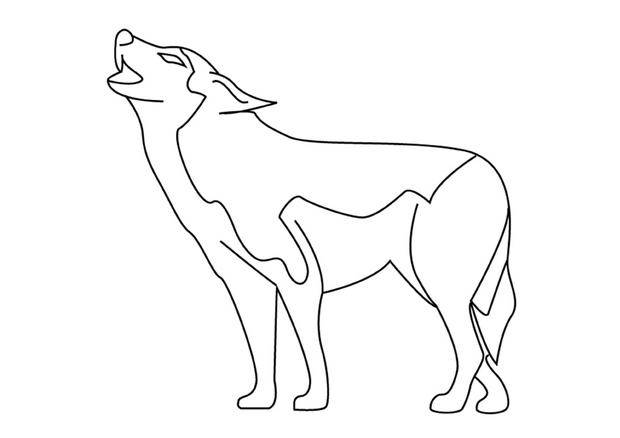Free coloring and drawings A drawing of a Wolf  Coloring page