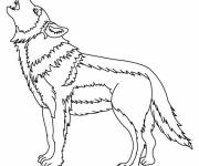 Free coloring and drawings Wolf on computer online Coloring page