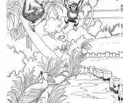 Free coloring and drawings Monkey area at the Zoo Coloring page