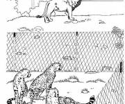 Free coloring and drawings Predators in the Zoo Coloring page