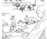 Free coloring and drawings The Zoo garden Coloring page