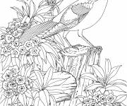 Coloring pages Flower landscape and adult animals
