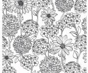 Coloring pages Flowers and Fields