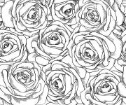 Coloring pages Adult Flowers and their Petals