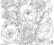 Free coloring and drawings Different Adult Flowers Coloring page