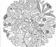 Coloring pages Adult Garden and Nature