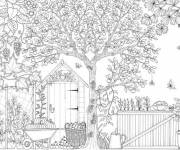 Coloring pages Adult garden facade