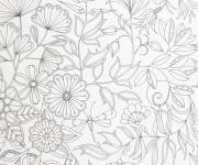 Free coloring and drawings Adult Kindergarten Coloring page
