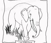 Coloring pages An Elephant to cut out