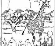 Coloring pages Animals africa