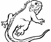 Coloring pages Lizard in Africa