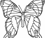 Free coloring and drawings Butterfly Online Coloring page