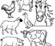Free coloring and drawings Farm animals in black and white Coloring page
