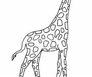 Coloring pages Outdoor giraffe