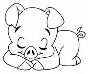 Free coloring and drawings Sleeping pig Coloring page
