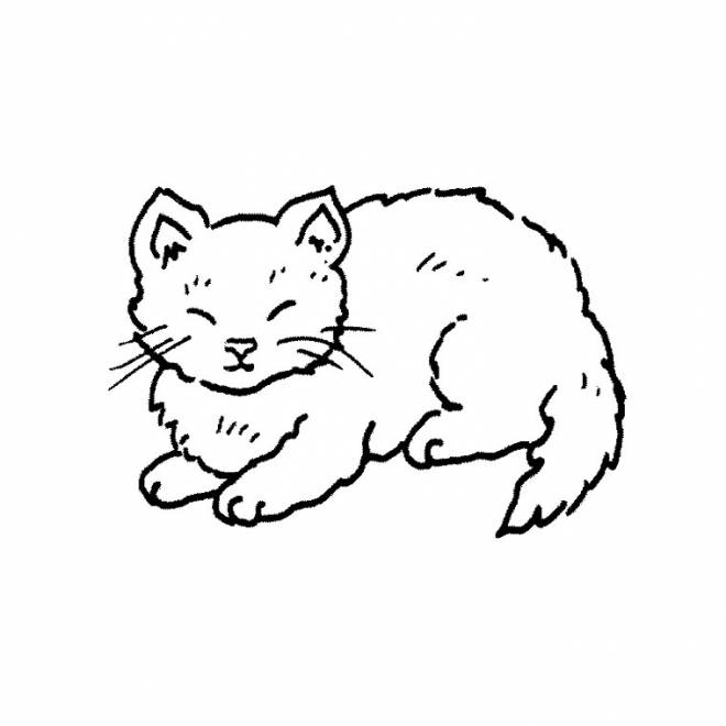 Free coloring and drawings A domestic cat Coloring page