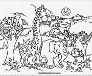 Free coloring and drawings Outdoor animals Coloring page
