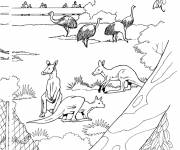 Free coloring and drawings Zoo animals for coloring Coloring page